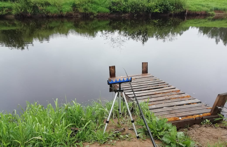 Место ловли на реке Оредеж