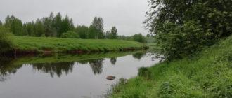 река Оредеж в Ленинградской области